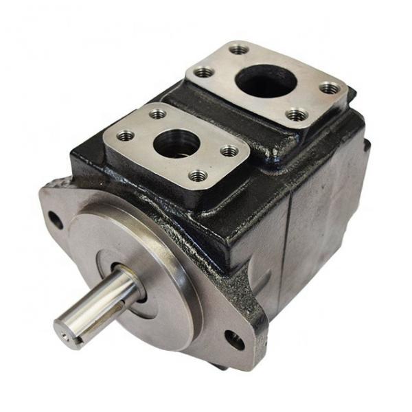 DENISON T6CC-022-014-2R00-C100 vane pump #1 image