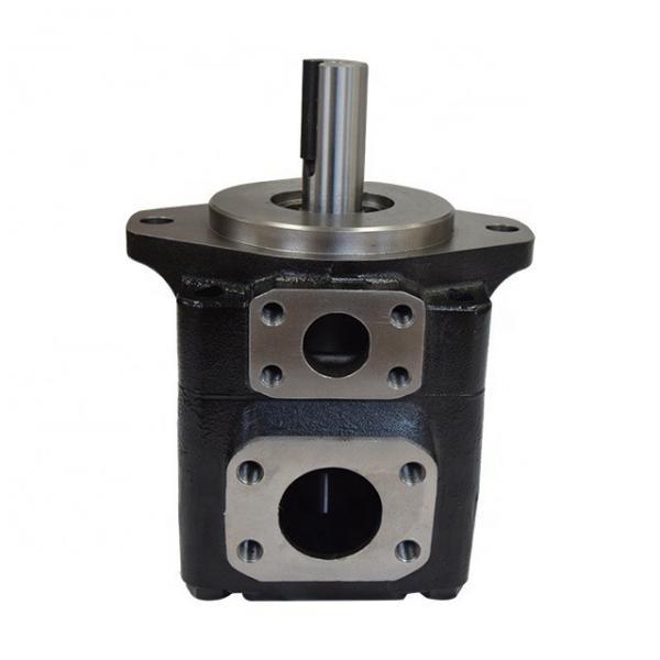 DENISON T6EC-062-014-2R00-C100 vane pump #1 image